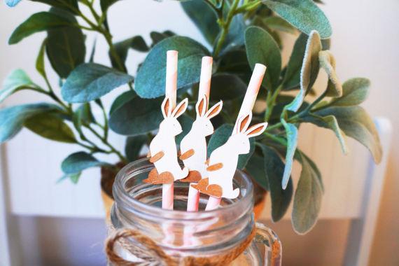 peter rabbit theme party paper straws